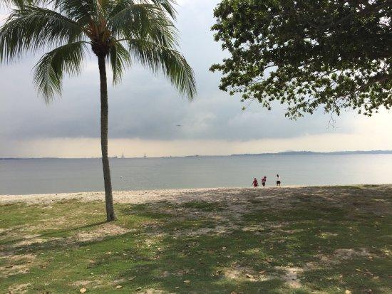 The Original Singapore Walks: photo1.jpg