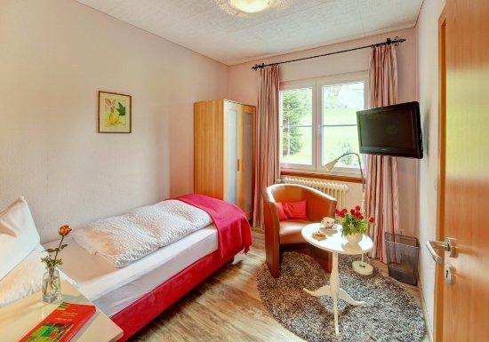 am feldberg die pension updated 2017 hotel reviews price comparison germany tripadvisor. Black Bedroom Furniture Sets. Home Design Ideas
