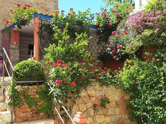 Fitou, Francia: Jardin en fleur