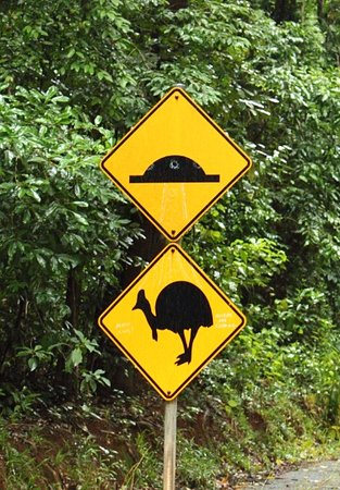 Daintree Discovery Centre: Cassowary sign on road to visitor centre