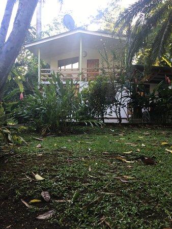 """3 Bamboo: vue de """"notre"""" maison"""