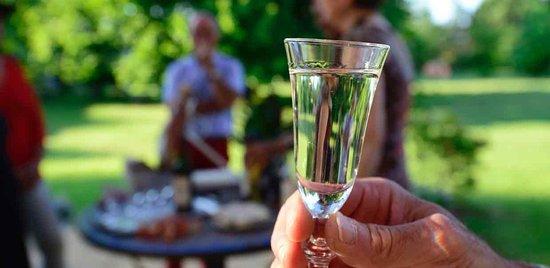 Vic-en-Bigorre, France: à l'heure de l'apéritif