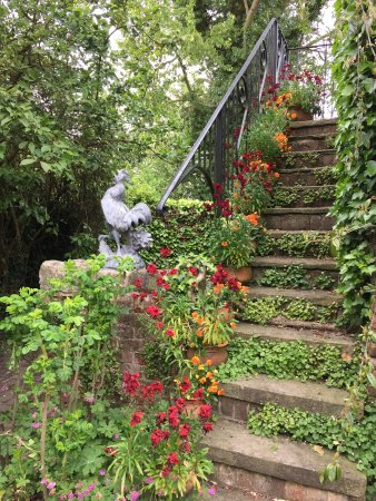 Stillingfleet, UK: Steps adorned with flowers near the tea room.