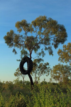 Normanton, Avustralya: Scenery