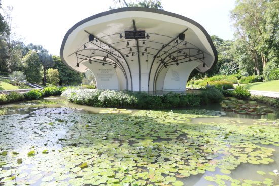 Singapore botanic garden 26 photo de jardin botanique for Au jardin les amis singapore botanic gardens