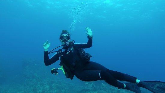 Kona Diving Company >> Kona Diving Company (Kailua-Kona, HI): Top Tips Before You ...