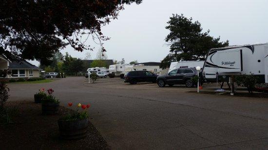 Blue Ox RV Park: sites