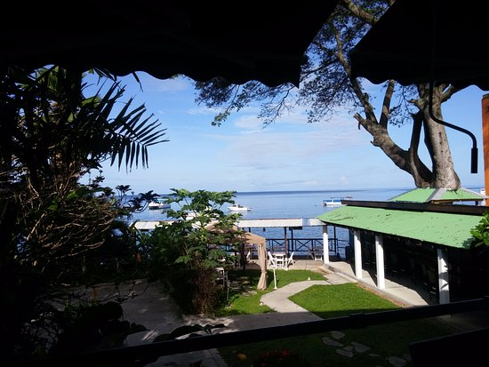 Castle Comfort Dive Lodge: View from breakfast area.
