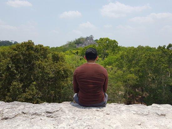 Calakmul, Mexico: Vista desde piramides