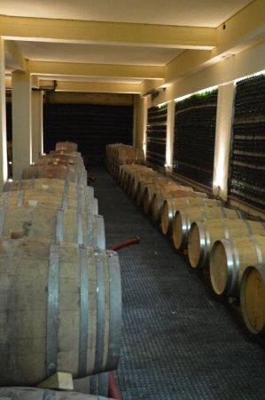 Santorini Wine Adventure: Boutari Winery