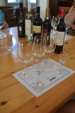 Santorini Wine Adventure: First wine tasting