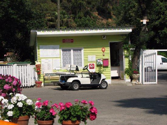 Le Val Fleuri (Cagnes-sur-Mer, France) - voir les tarifs et avis camping - TripAdvisor
