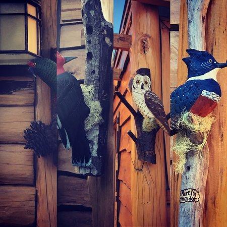 Cabin Pewma Futrono: cabanas con nombre de aves de la zona