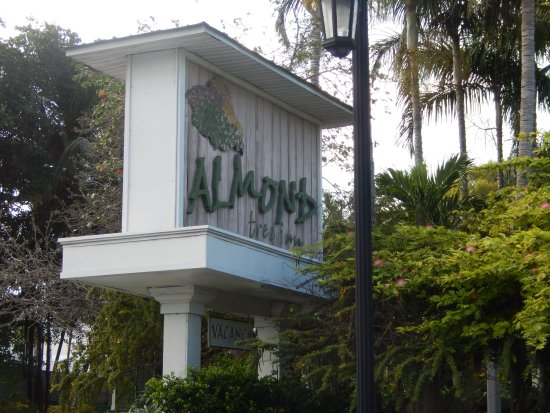 Almond Tree Inn Picture