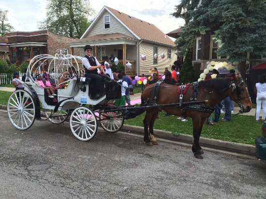 ‪Chicago Horse and Carriage‬