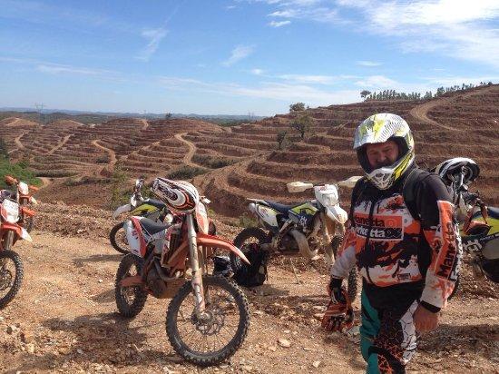 Sao Bartolomeu de Messines, Portugal: questa e' una zona di ripiantumazione dell'eucalipto