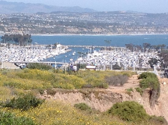 View of Dana Point harbor from Hill Top Park - April 2017