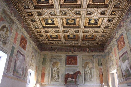 La sala dei cavalli foto di palazzo te mantova for Stanza mantova