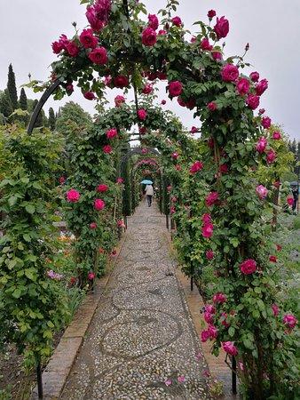 Museo de La Alhambra: giardino esterno