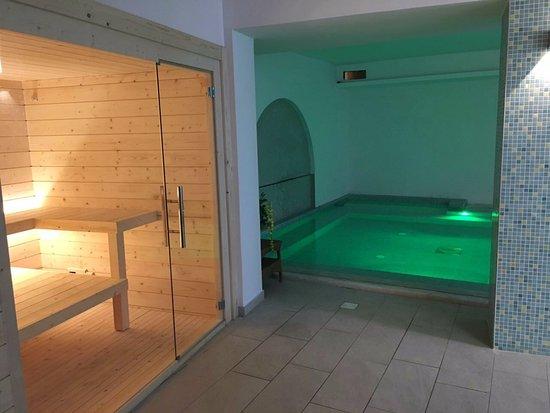 Family Spa Hotel Le Canne: Sauna finlandese