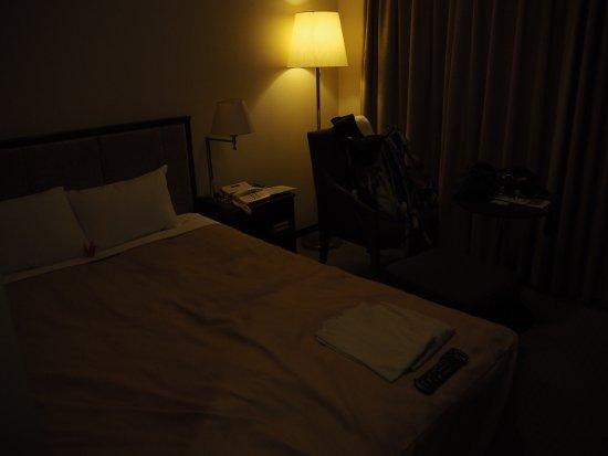 Okura Frontier Hotel Tsukuba Epochal : 広い部屋でした