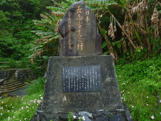 Stone Monument of Declaration of Longevity