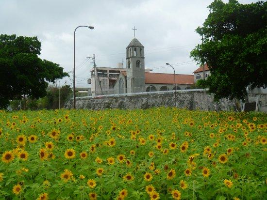 Miyazato Christ Church
