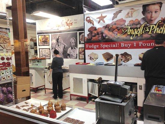 Angel Phelps Chocolate Factory