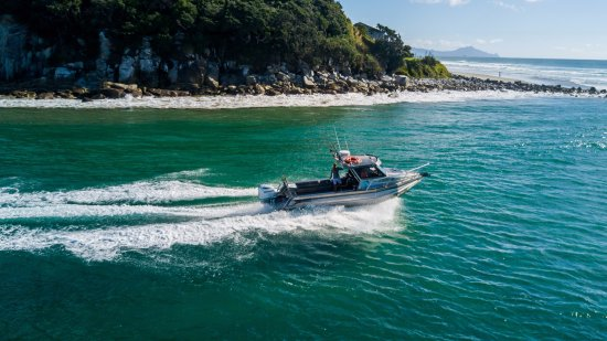 Mangawhai, Nieuw-Zeeland: The Hauraki Gulf is the ideal spot for a fishing trip with beautiful scenery to enjoy.