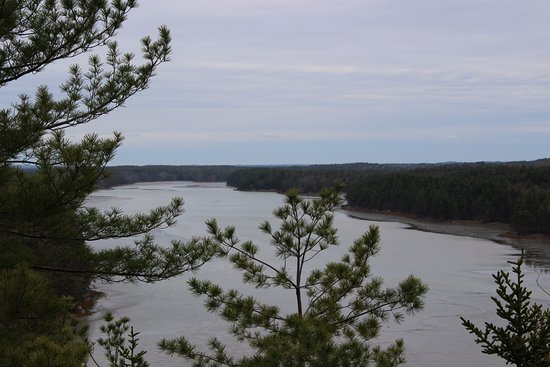 Harpswell, ME: Looking out from the cliff at the mud in Long Reach
