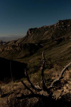 Alpine, TX: View from Lost Mine Trail