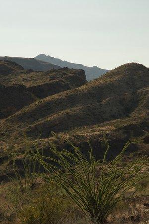 Alpine, تكساس: Mule Ears Trail