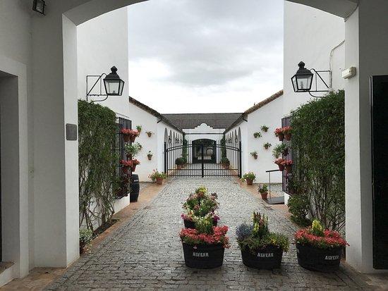 Montilla, Spania: photo2.jpg