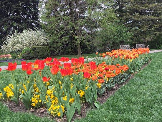Picture Of New York Botanical Garden Bronx Tripadvisor