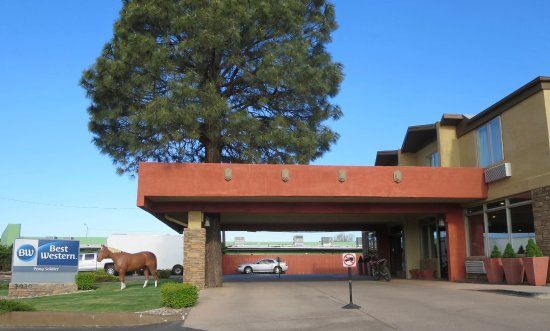 Best Western Pony Soldier Inn & Suites: Pony Soldier entrance with a tall ponderosa pine.