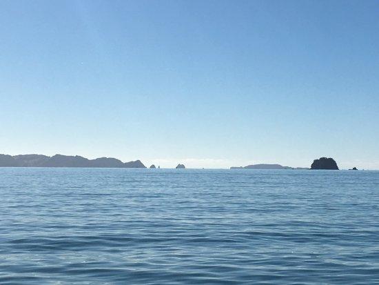 Ocean off Whitianga