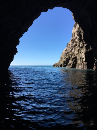 Whitianga, Nueva Zelanda: Inside a cave looking out