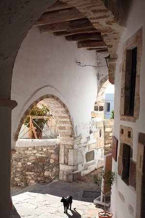 Old Town: Cat under many archways