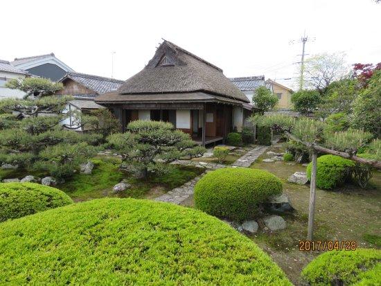 Isomeshi's Garden