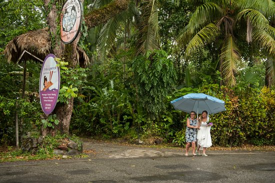 Hotel La Costa de Papito: Even with the tropical rain shower, it was still the perfect day!