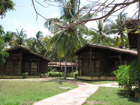 Wooden Bungalows Picture Of Gran Caribe Club Cayo Guillermo
