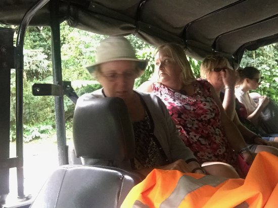 Raro Mountain Safari Tour: My wife, Jean, seated in the passenger area.