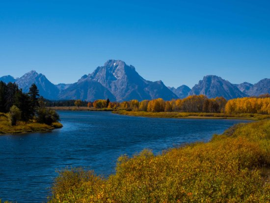Jackson Lake Lodge : Oxbow bend was just a few miles down the road