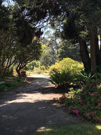 Picture Of Mendocino Coast Botanical Gardens Fort Bragg Tripadvisor