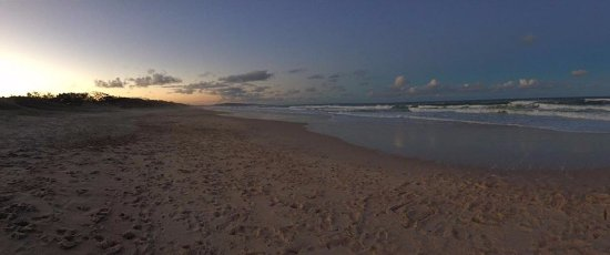 Noosa North Shore Beach Campground Photo