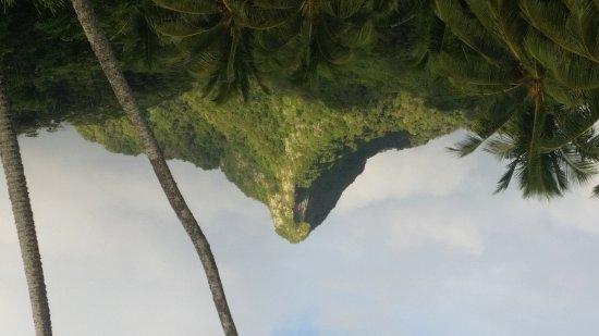 Matavera, Cook Islands: Ikurangi Eco Retreat