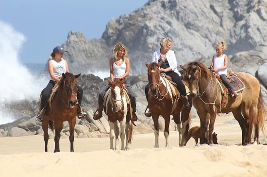 Pacific Horseback Riding Tour in Cabo...