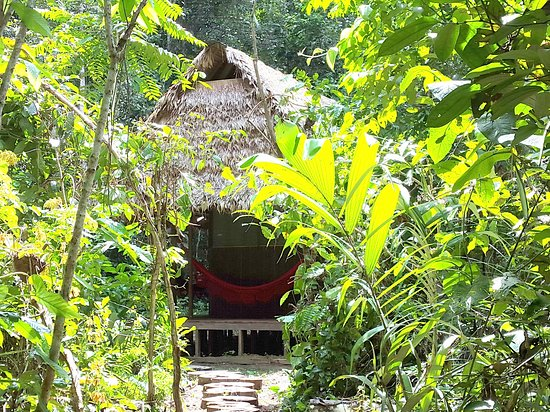 Rurrenabaque, Bolivia: Exclusive cabin with private bathroom
