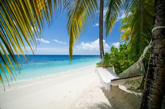 Mirihi island resort desde maldivas opiniones for Conrad maldives precios