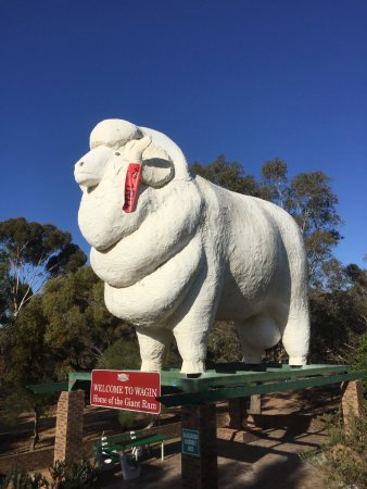 Wagin, Australia: The Red Tag was not there three years ago !
